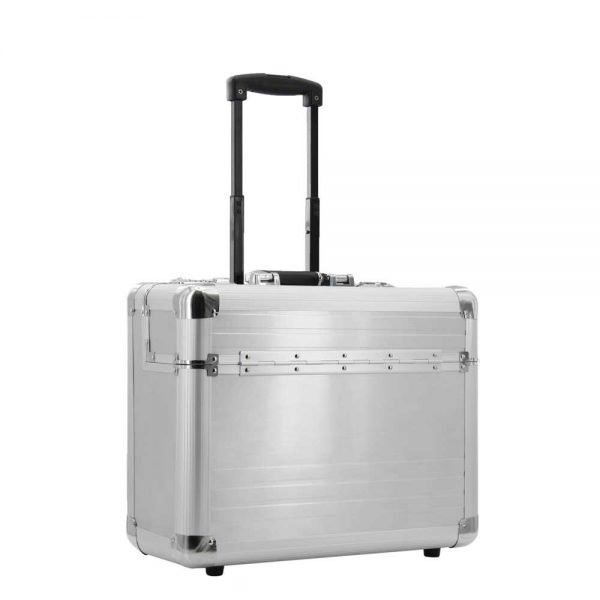 Dermata Business Executive Pilottrolley zilvergrijs Handbagage koffer