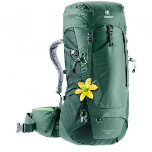 Deuter Futura Pro 38 SL Backpack seagreen/forest backpack