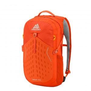 Gregory Nano Backpack 20L burnished orange backpack