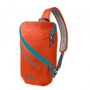 Jack Wolfskin Ecoloader 12 Bag wild brier backpack