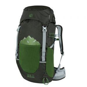 Jack Wolfskin Pioneer 22 Pack antique green backpack