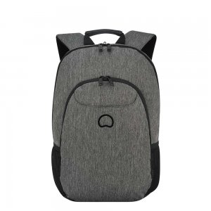Delsey Esplanade Two Compartments Laptop Backpack 13.3'' anthracite backpack