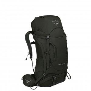 Osprey Kestrel 48 Backpack M/L picholine green backpack