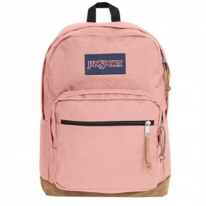 JanSport Right Pack Rugzak misty rose Handbagage koffer